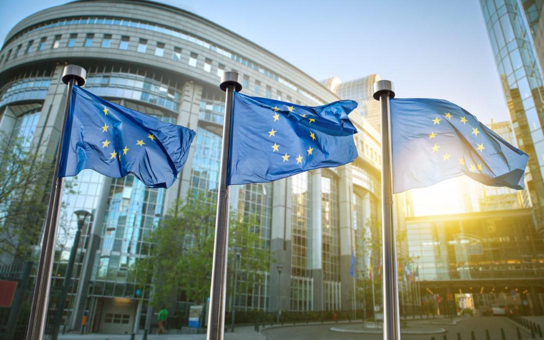 Access to the European Single Market