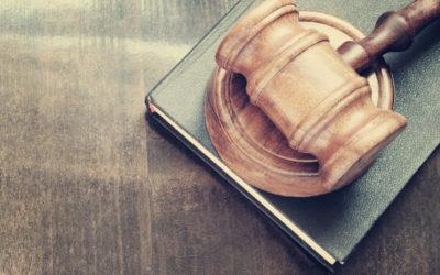 Legal Basics in Germany